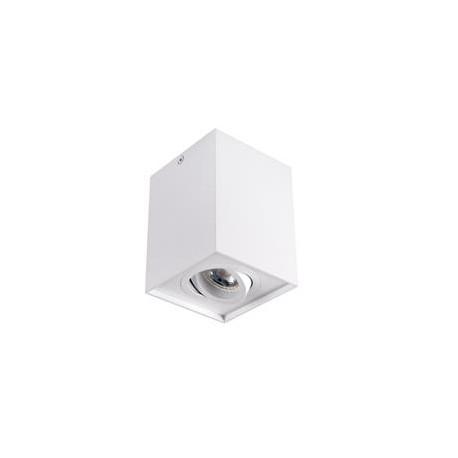 Přisazené výklopné bodové svítidlo Kanlux GORD DLP 50-W (25470)